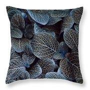 Bluey Throw Pillow