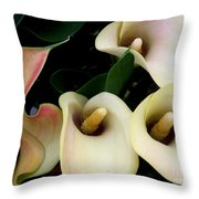 Blushing Calla Lilies Throw Pillow