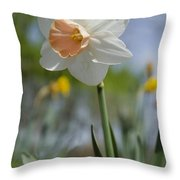 Blushing In The Garden Throw Pillow