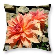 Blushing Peach Dahlias Throw Pillow