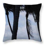 Blustery Beach At Dawn Throw Pillow