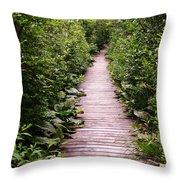 Boardwalk Swamp Throw Pillow