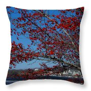 Boat House Row Peeking Through Throw Pillow by Lisa Phillips