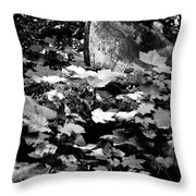 Boat In The Landscape II Throw Pillow