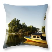 Boat On Sandy Beach Throw Pillow