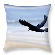 Boat-tailed Grackle - D006732 Throw Pillow