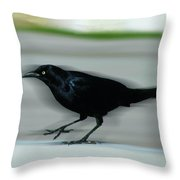 Boattail In The Fast Lane Throw Pillow
