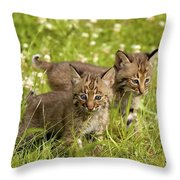 Bobcat Kittens Throw Pillow