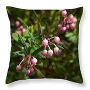 Bog-rosemary Throw Pillow