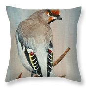 Bohemian Waxwing Study  Throw Pillow