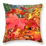Bold And Bedazzling Throw Pillow