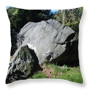 Bolder Central Park Throw Pillow
