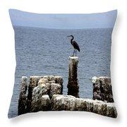 Bombay Beach Throw Pillow