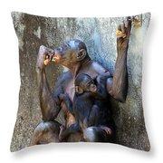 Bonobo 1 Throw Pillow