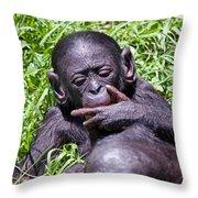 Bonobo 2 Throw Pillow