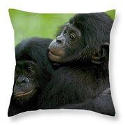 Bonobo Orphans Hugging Throw Pillow