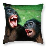 Bonobo Pan Paniscus Juvenile Pair Throw Pillow