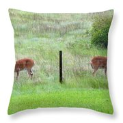 Bookend Twin Bucks Throw Pillow