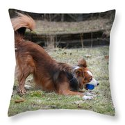 Border Collie Playing With Ball Throw Pillow