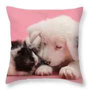 Border Collie Pup And Guinea Pig Throw Pillow