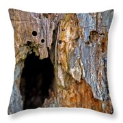 Bored By Woodpeckers Feeding Throw Pillow