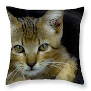 Born Wild Throw Pillow