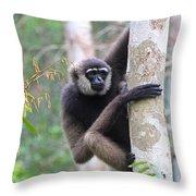 Bornean White-bearded Gibbon Throw Pillow
