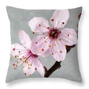 Botanical II Throw Pillow