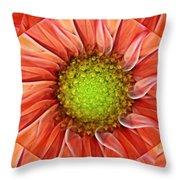 Botanical Swirl Throw Pillow