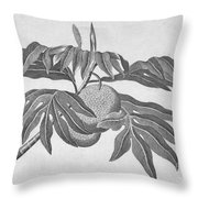 Botany: Breadfruit Tree Throw Pillow