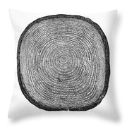 Botany:  Fir Tree Trunk Throw Pillow