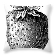Botany: Strawberry Throw Pillow