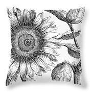 Botany: Sunflower Throw Pillow