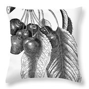 Botany: The Cherry Throw Pillow