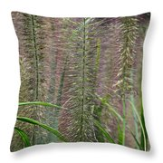 Bottle Brush Grass Throw Pillow