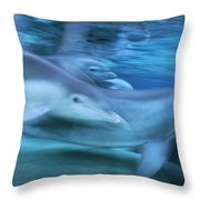 Bottlenose Dolphins Swimming Hawaii Throw Pillow