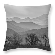 Boulder County Layers Bw Throw Pillow