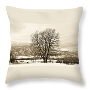 Boulder County Throw Pillow