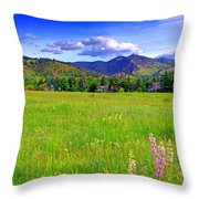 Boulder Park View Throw Pillow