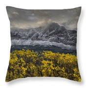 Boulder Ridge Throw Pillow