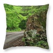Boulder Rural Mountain Road Spring Throw Pillow