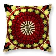 Bouquet Of Roses Kaleidoscope 5 Throw Pillow