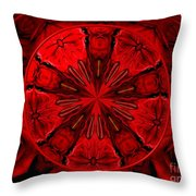 Bouquet Of Roses Kaleidoscope 6 Throw Pillow