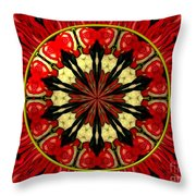Bouquet Of Roses Kaleidoscope 8 Throw Pillow