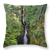 Box Canyon With Flowing Stream, Mount Throw Pillow