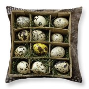 Box Of Quail Eggs Throw Pillow