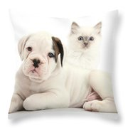 Boxer Puppy And Blue-point Kitten Throw Pillow