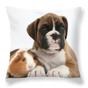 Boxer Puppy And Guinea Pig Throw Pillow