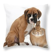 Boxer Puppy And Netherland-cross Rabbit Throw Pillow