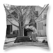 Boyd Lane Plantation Bw Throw Pillow